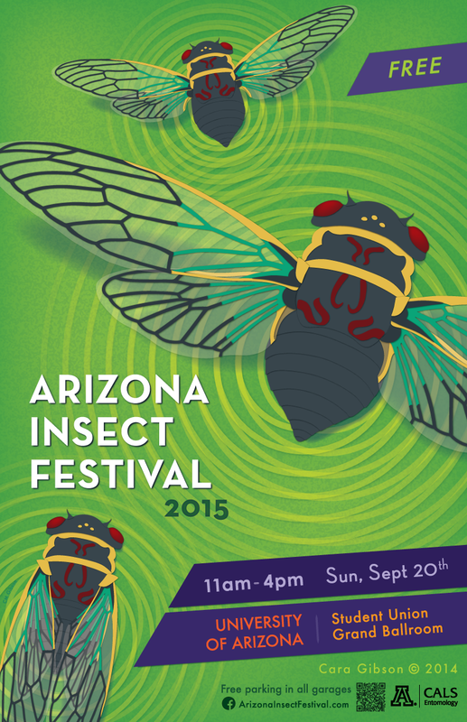 2015 Arizona Insect Festival flyer with Apache / Citrus cicadas. Artwork by Cara Gibson